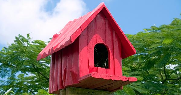 Birdhouse-Red.jpg